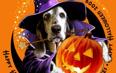 Maggie Halloween 2009